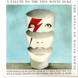 Album cover of A Salute to the Thin White Duke - the Songs of David Bowie