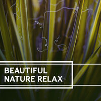 Nature Sound Series: Beautiful Nature Relax – Sounds of Nature