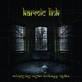 Album cover of No Light but Rather Darkness Visible
