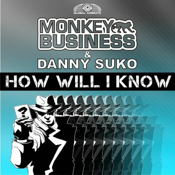 How Will I Know cover