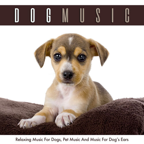Dog Music: Dog Music: Relaxing Music For Dogs, Pet Music and