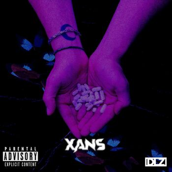 Xans cover