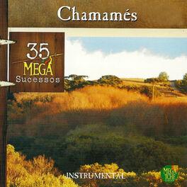 Album cover of Chamamés 35 Mega Sucessos