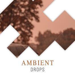 Album cover of # 1 Album: Ambient Drops
