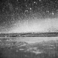Rain Sounds|Nature Sounds Nature Music|Sleep Sounds of