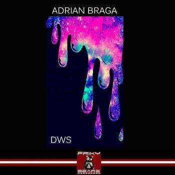 DVVS cover