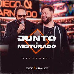Música Você Não Nem Eu - Diego & Arnaldo (Com Tarcísio do Acordeon) (2021)