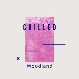 Album cover of # 1 Album: Chilled Woodland