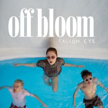 Falcon Eye cover