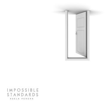 Impossible Standards cover