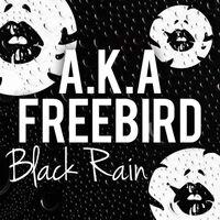 Distant Destinations - AKA-FREEBIRD