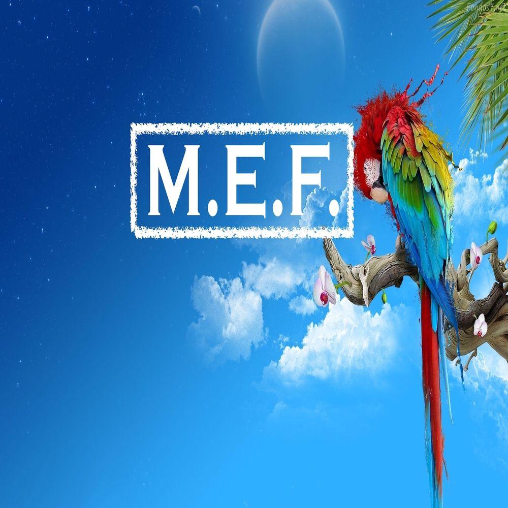 Ed Sheeran - Photograph (M.E.F. Rework)