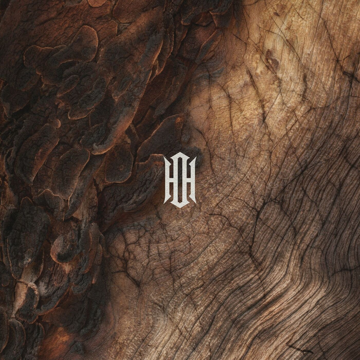 Our Hollow, Our Home - Remember Me [single] (2021)