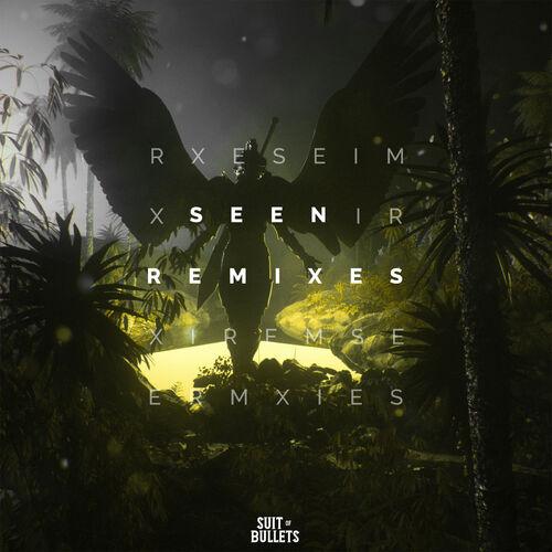 Anikdote - Seen (Remixes) [EP] 2019