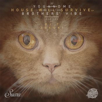 House Will Survive cover