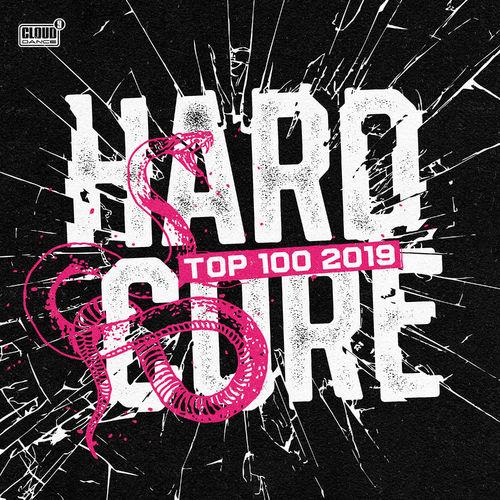 VA - HARDCORE TOP 100 2019 [LP]