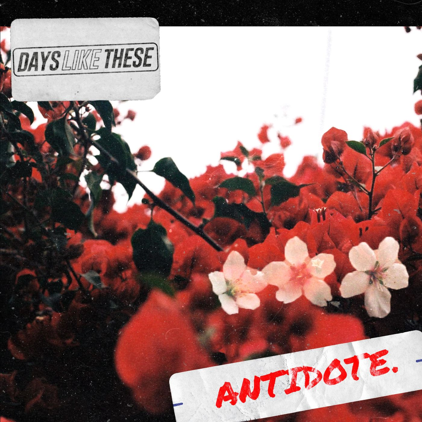Days Like These - Antidote [single] (2019)