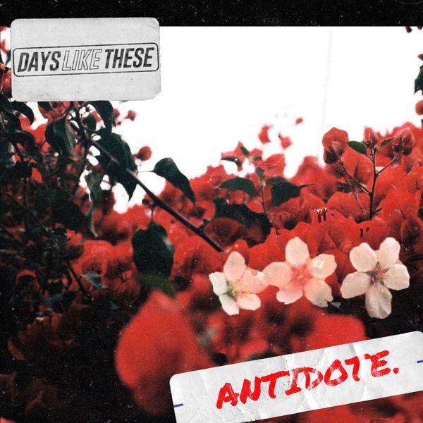 Days Like These - Antidote [single] (2019)