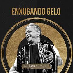 Flávio José – Enxugando Gelo