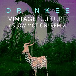 Album cover of Drinkee (Vintage Culture & Slow Motion! Remix)