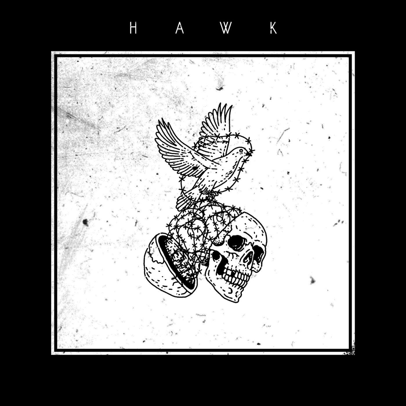 Hawk - Mileage [single] (2019)