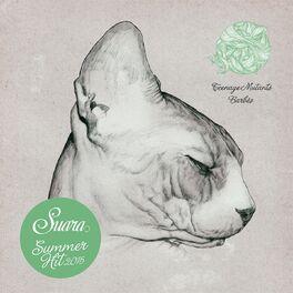 Album cover of Suara Summer Hit 2015