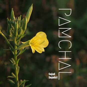 Pamchal cover