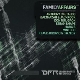 Album cover of Family Affairs Vol.2