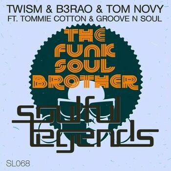 The Funk Soul Brother cover