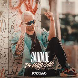 Download Boyzinho o Rei da Bregadeira - Saudade do Paredão