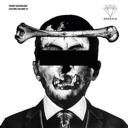 Album cover of Culture Vulture LP