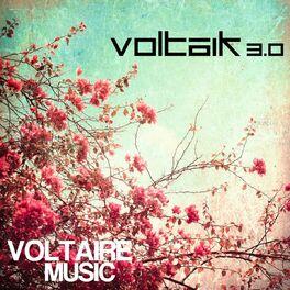 Album cover of Voltaik 3.0