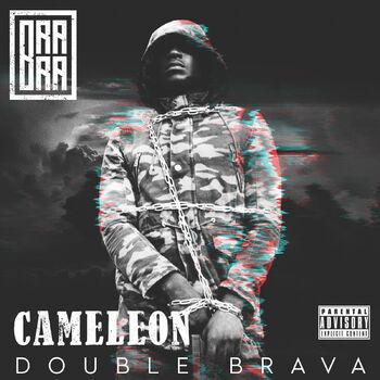 Cameleon cover