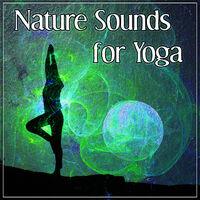 Kundalini Yoga Group: Nature Sounds for Yoga – New Age Meditation