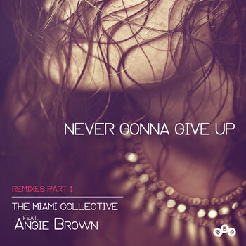 Never Gonna Give Up cover