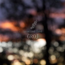 Album cover of Promised Land