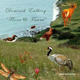 Album cover of Flora & Fauna