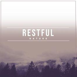 Album cover of Restful Nature