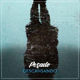 Album cover of # 1 Album: Pesado Descansando