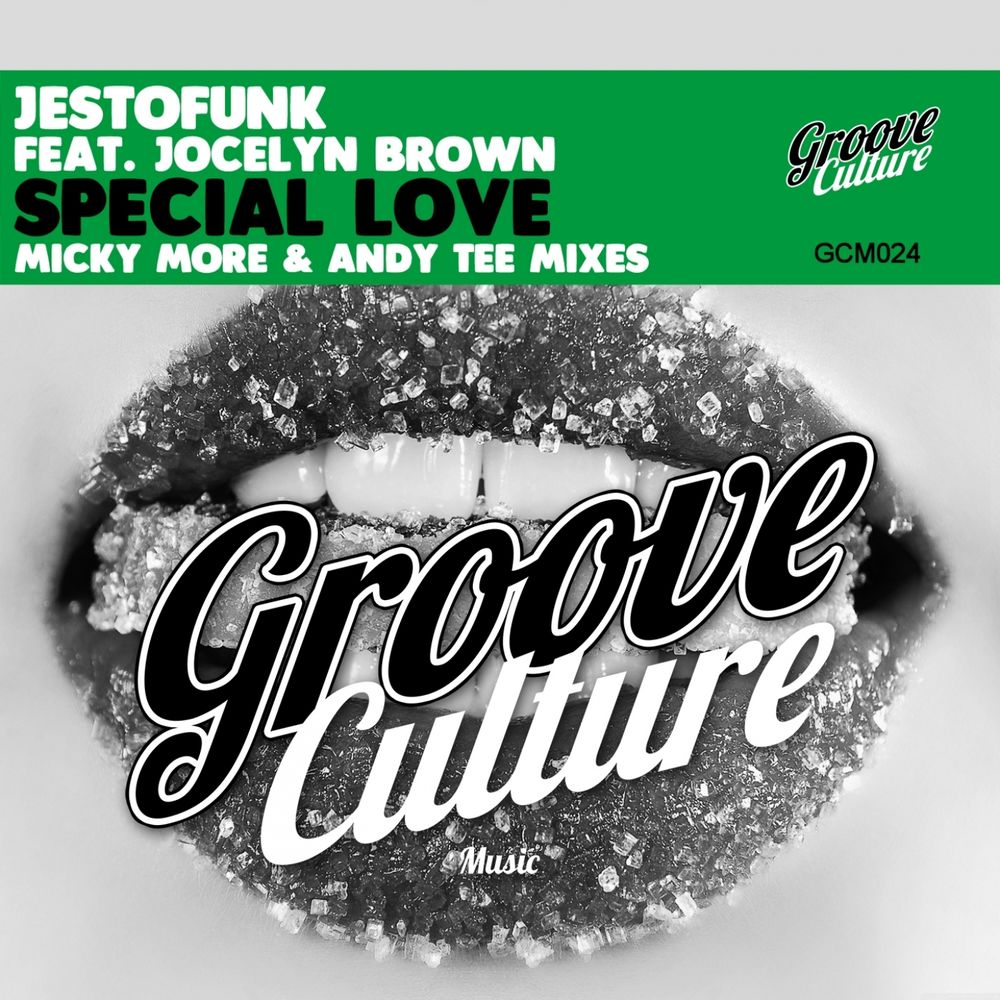 Special Love (Micky More & Andy Tee Club Radio)