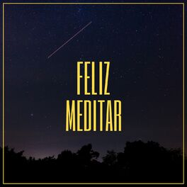 Album cover of # 1 Album: Feliz Meditar