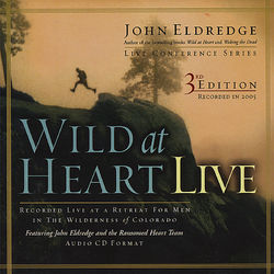 Wild at Heart Live (Third Edition): Session 04 - I Have Come to Heal the Brokenhearted
