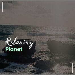 Album cover of # 1 Album: Relaxing Planet