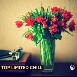 Album cover of Top Limited Chill