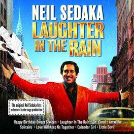 Album cover of Laughter In The Rain