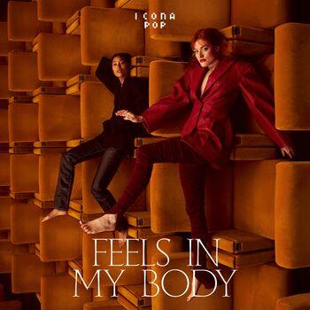 Feels In My Body cover