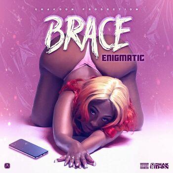 Brace cover