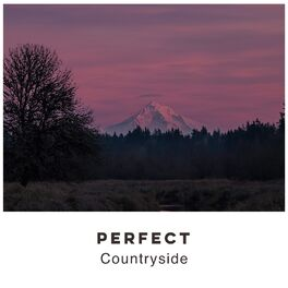 Album cover of # Perfect Countryside