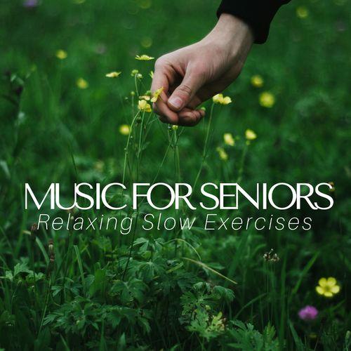 Unwind Maestro & Meditation Guru: Music for Seniors