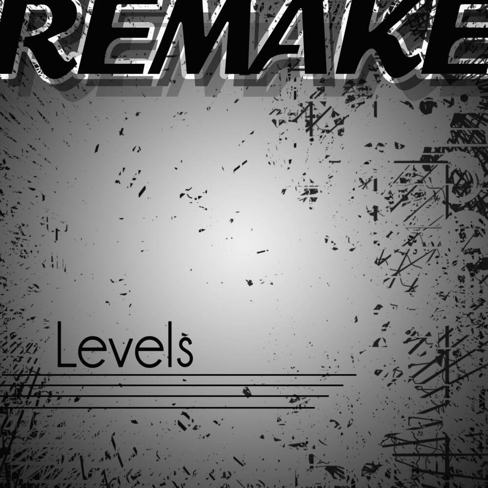 Levels (Avicii Remake)